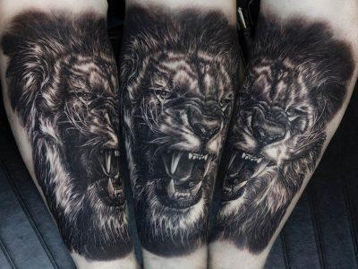black and grey tattoo, realism tattoo, surrealism tattoo , smooth tattoo, king lion tattoo, lion roaring tattoo, wild lion tattoo, wild africa tattoo, surrealistic lion tattoo, realistic lion tattoo