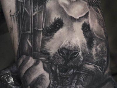 black and grey tattoo, realism tattoo, surrealism tattoo , smooth tattoo , panda tattoo, wild life tattoo, panda and bamboo tattoo, nature fighting back tattoo